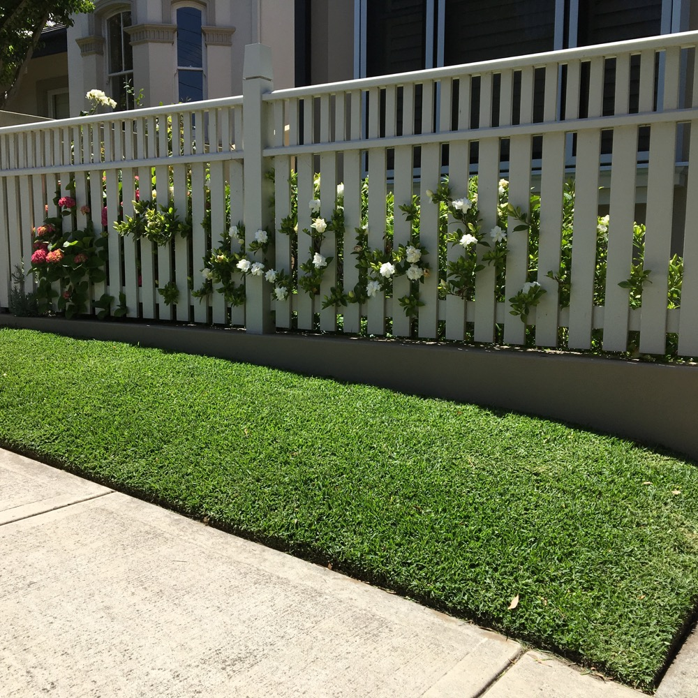 Lawn with a pathway