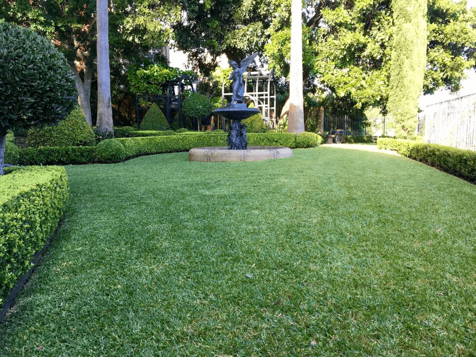 Back yard with neatly trimmed hedges and green healthy grass