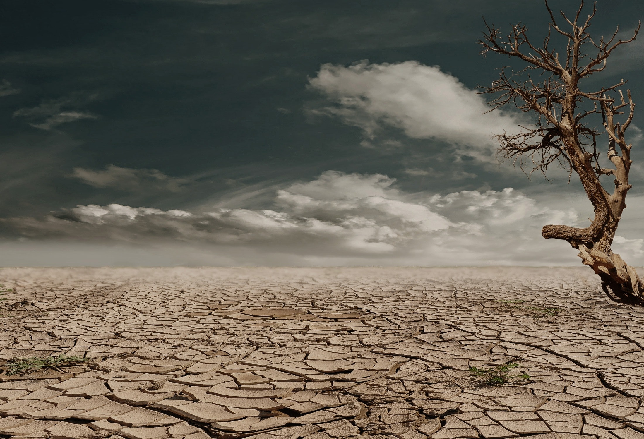 landscape image of arid landscape with cracked ground affected by drought